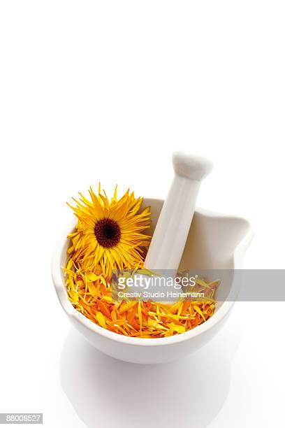 Marigold blossoms (Calendula officinalis) in Mortar with pestle, elevated view