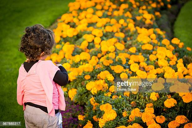 marigold girl - emma baker stock pictures, royalty-free photos & images