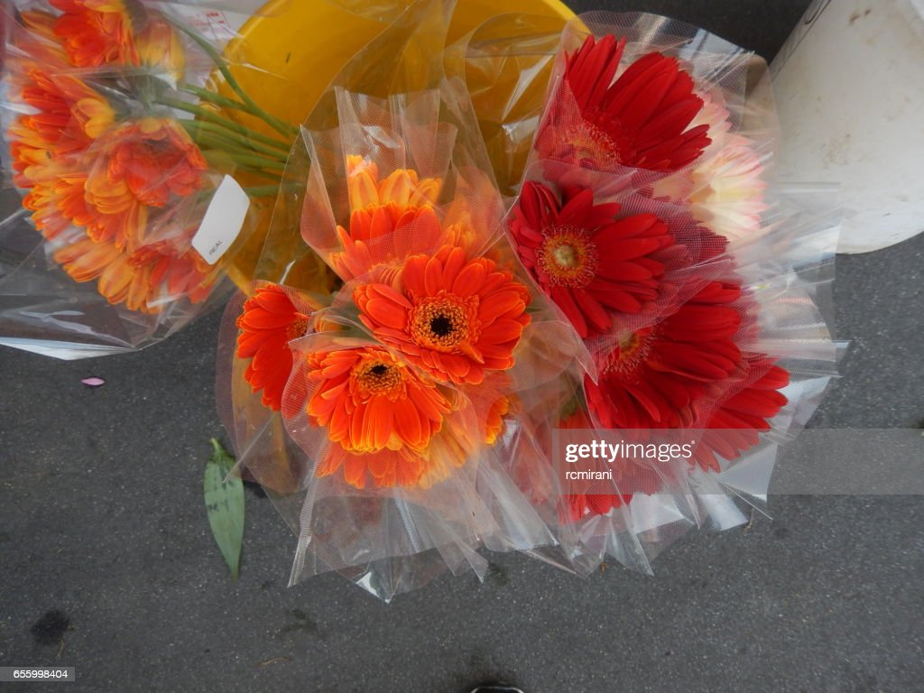 Marigold Pink Orange Yellow Flower Bouquet Stock Photo Getty Images