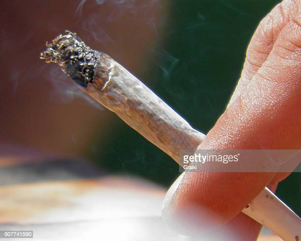 marijuana cigarette extreme closeup - evil stock pictures, royalty-free photos & images