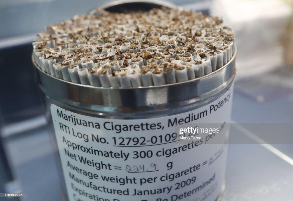 Museum Dedicated To Marijuana Opens In Los Angeles : Nieuwsfoto's