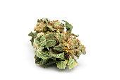 Marijuana from Holland