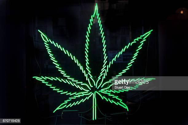 marijuana leaf neon sign at dispensary - estampa de folha - fotografias e filmes do acervo