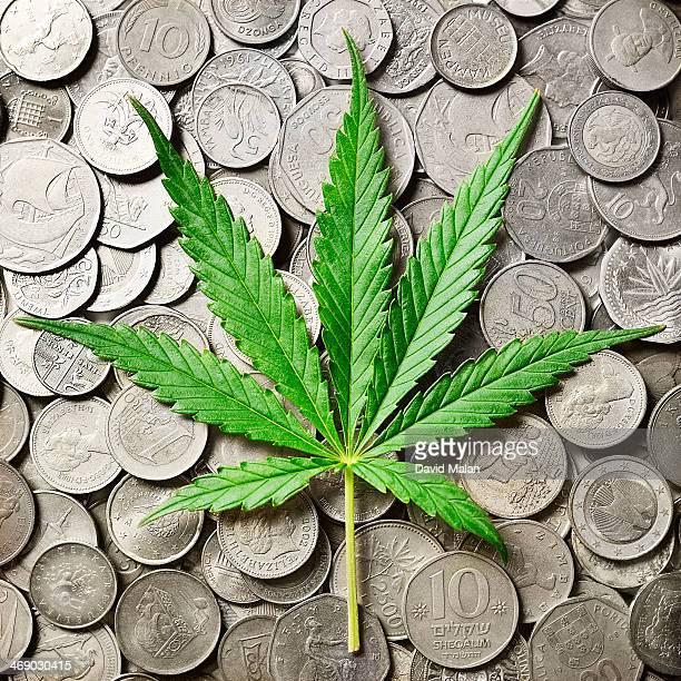 marijuana leaf on silver coins - marijuana money stock photos and pictures