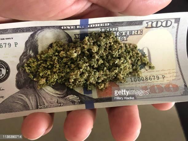 marijuana on $100 bill - marijuana money stock photos and pictures