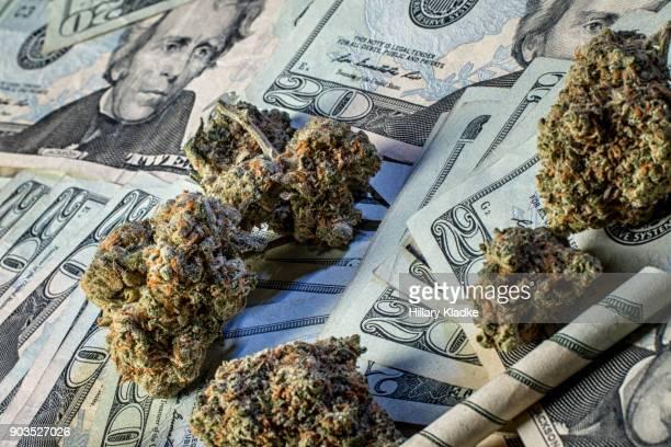 Marijuana on $20 bills