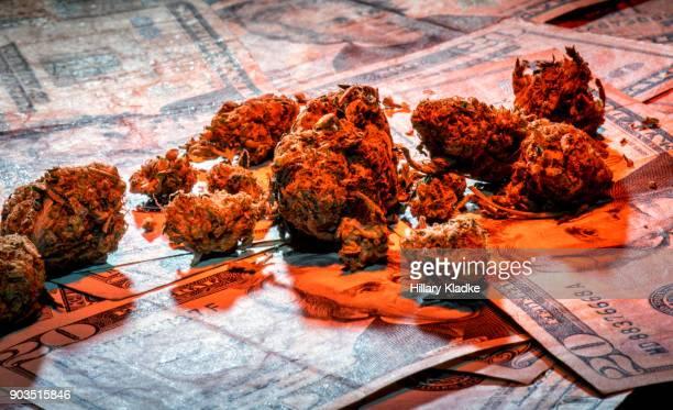 Marijuana on $20 dollar bills