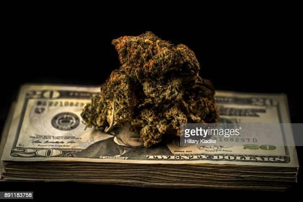 marijuana on stack of $20 - marijuana money stock photos and pictures
