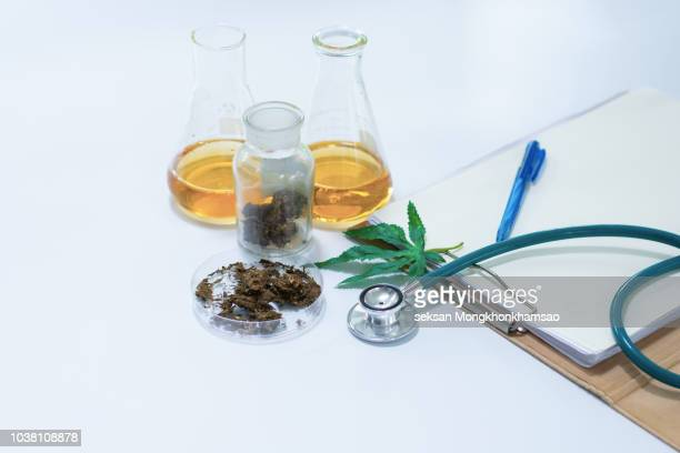 marijuana research - cannabis oil stock photos and pictures