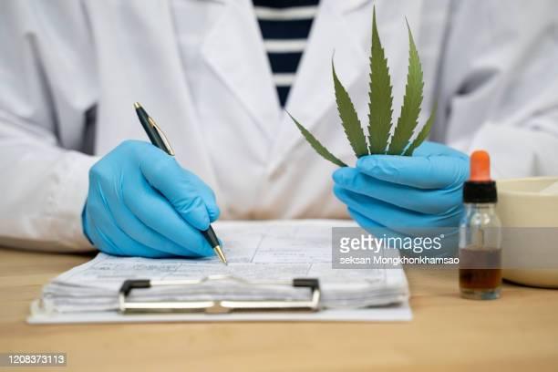 marijuana research - 合法化 ストックフォトと画像