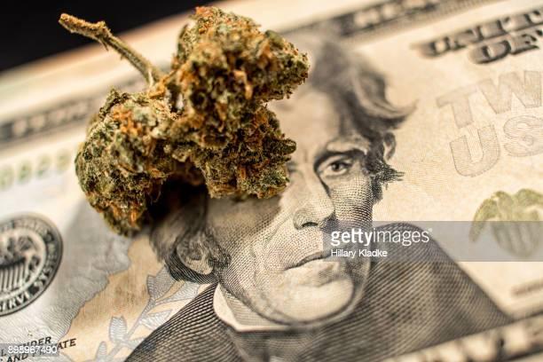 Marijuana shaped bud on $20
