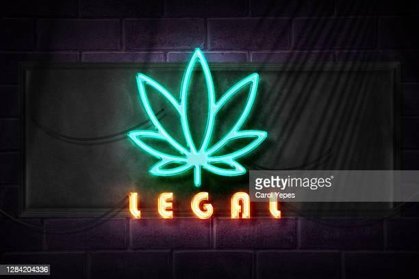marijuana symbol  with legal text in neon lights - légalisation photos et images de collection