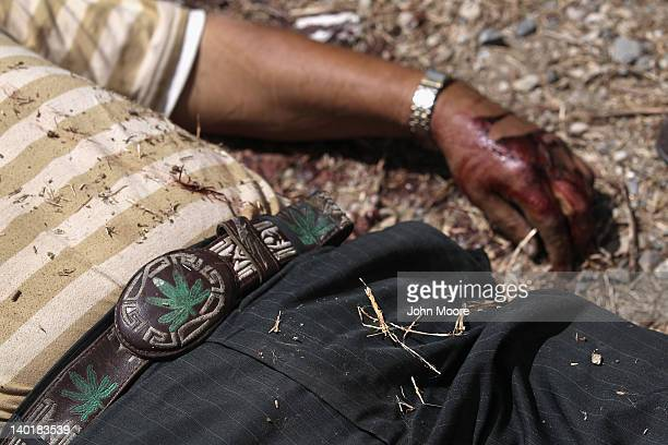 A marijuana themed belt adorns the victim of an apparent drugrelated execution on February 29 2012 in Acapulco Mexico Drug violence surged in the...