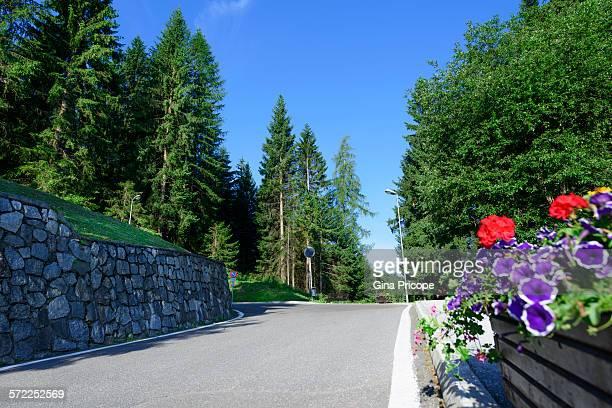 Marilleva 1400, Italy, road up the mountain