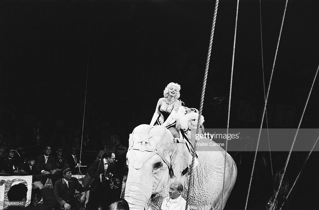 Marilyn Monroe At Barnum Circus : News Photo