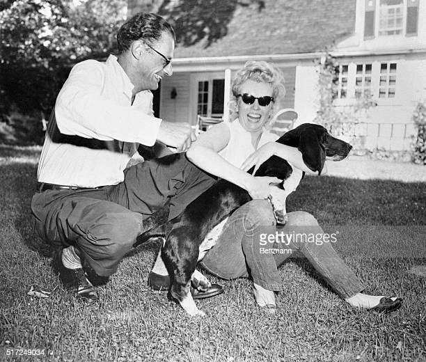 Marilyn Monroe seems to have also won the affection of playwright Arthur Miller's dog Hugo during a playful moment at Miller's summer home on June...