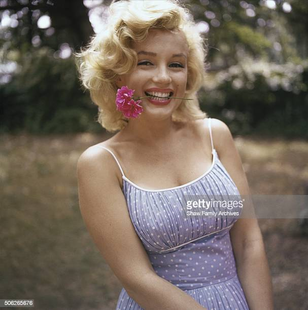 Marilyn Monroe wearing a blue dress with a pink carnation in her teeth at her home in 1957 in Amagansett New York
