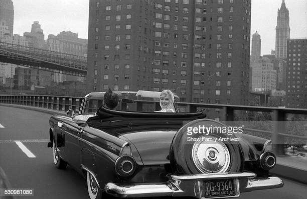 Marilyn Monroe with her husband the playwright Arthur Miller in a convertible Ford Thunderbird in 1957 in New York New York