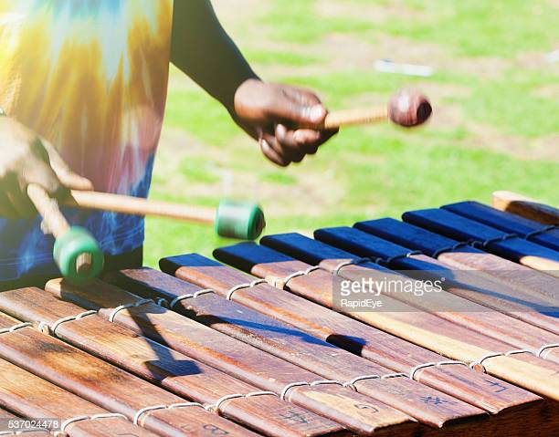 Marimba player in South African park, Hermanus, tuneful, energetic