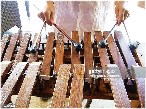 Marimba Player...
