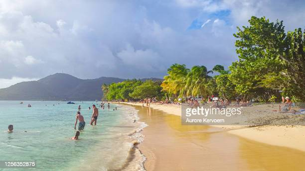 pointe marin beach, club med les boucaniers beach, martinique. - bras de mer caractéristiques côtières photos et images de collection