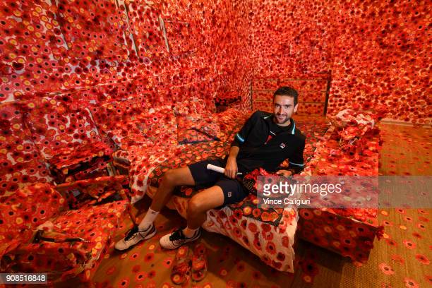 Marin Cilic of Croatia poses at the Triennial exhibition at The National Gallery Victoria on day eight of the 2018 Australian Open at Melbourne Park...