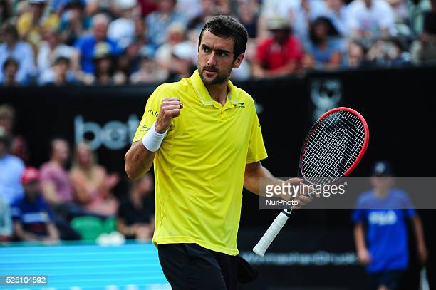 Marin Cilic raises fist during a match against Viktor Troicki in the Mercedes Cup semifinals in Stuttgart on June 13 2015