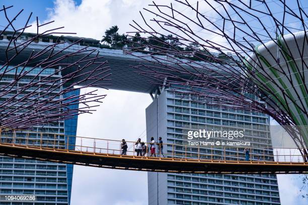Marina Bay Sands and Garden By The Bay in Singapore