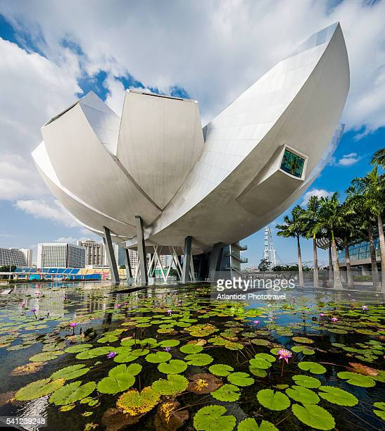 Marina Bay, view of the ArtScience Museum (Moshe Safdie Architect)