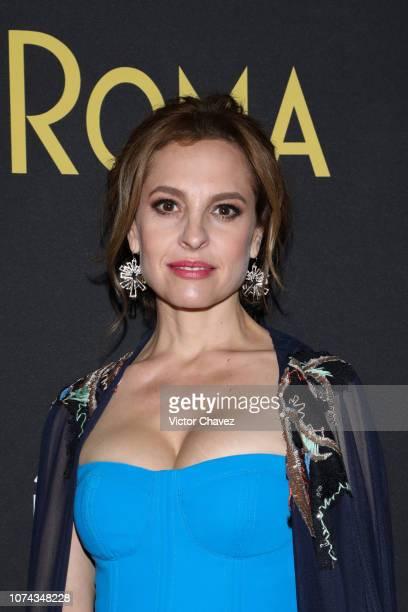 Marina de Tavira poses during the premiere of the Netflix movie Roma at Cineteca Nacional on December 18 2018 in Mexico City Mexico