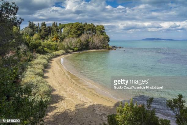 marina di grosseto, the beach - paesaggio marino foto e immagini stock