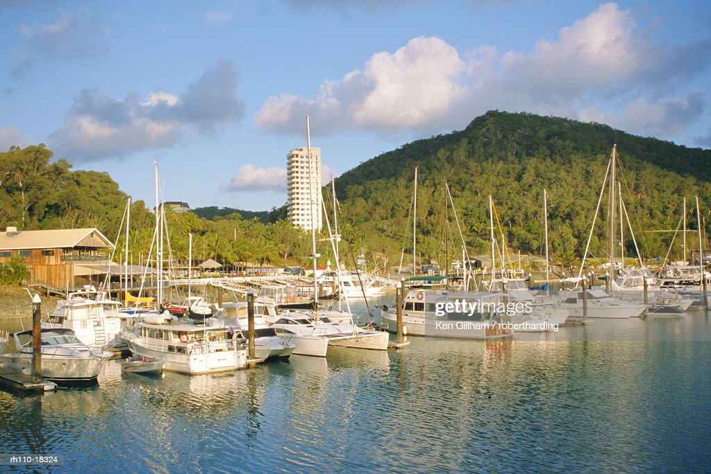 Marina, Hamilton Island, Whitsundays, Queensland, Australia : Foto de stock