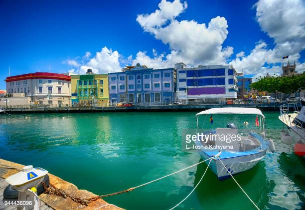 marina in barbados - barbados stock pictures, royalty-free photos & images