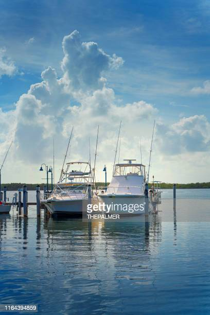 marina miami florida - gulf coast states stock pictures, royalty-free photos & images