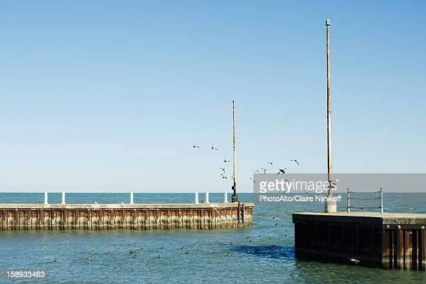 marina on the shore of lake michigan, lincoln park, chicago - quayside fotografías e imágenes de stock