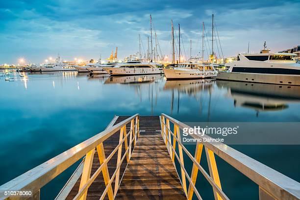 marina real juan carlos i (valencia. spain) - dähncke fotografías e imágenes de stock