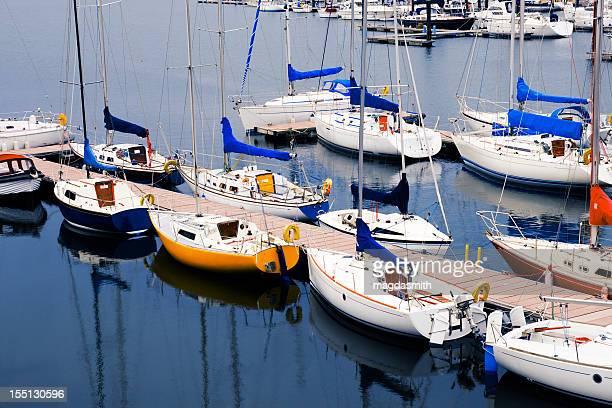marina with sailboats - magdasmith stock pictures, royalty-free photos & images