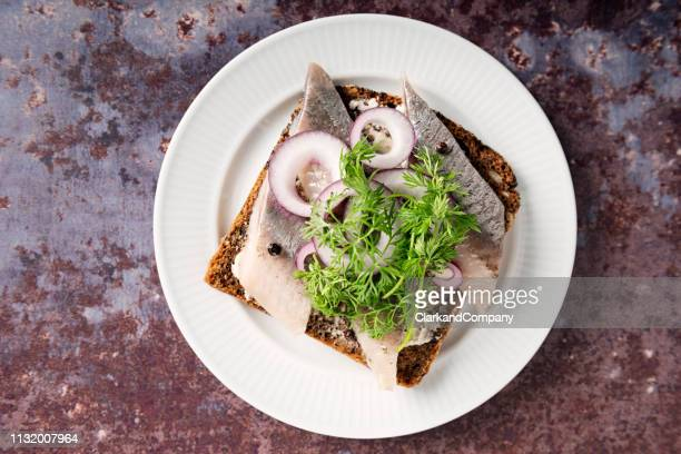 marinated herring with onion and dill, overhead view. - arenque imagens e fotografias de stock