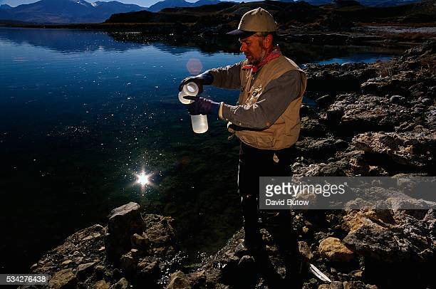 A marine biologist takes a sample from Mono Lake to determine which microbes are living in the water