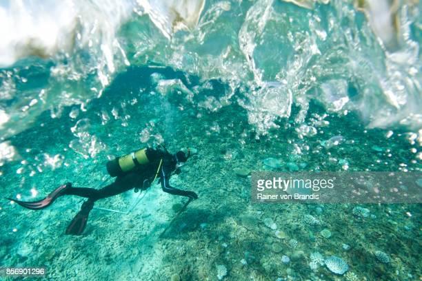 mariene bioloog onder ruwe zee