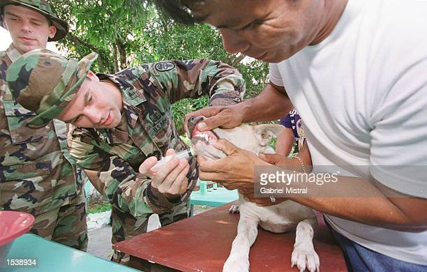 S Marine Capt Jim Giles from Hawaii vaccinates a dog at a medical mission set up in preparation for military training exercises with Filipino troops...