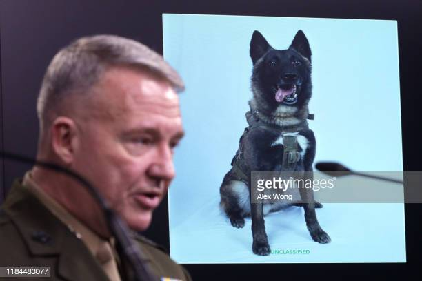 Marine Corps Gen. Kenneth McKenzie, commander of U.S. Central Command, speaks as a picture of the canine that was part of the operation, is on...
