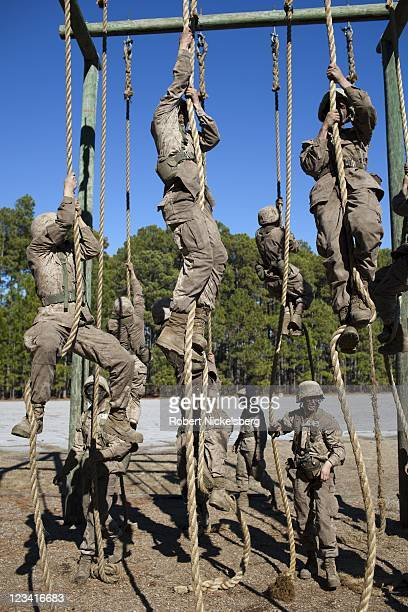 Marine Corps recruits climb ropes during the 54hour Crucible exercise January 7 2011 at the Marine Corps Recruit Depot on Parris Island South...