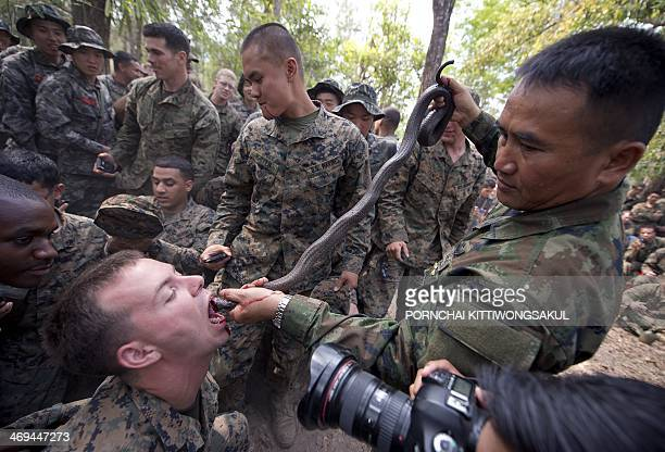 Marine drinks cobra blood during a jungle survival program as part of the annual Cobra Gold 2014 combined military exercise at a navy base in...