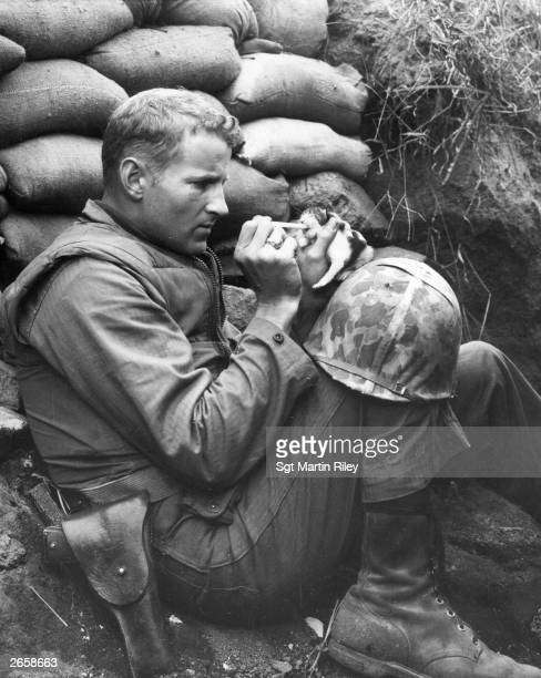 Marine feeds an orphan kitten found after a heavy mortar barrage near 'Bunker Hill' during the Korean War