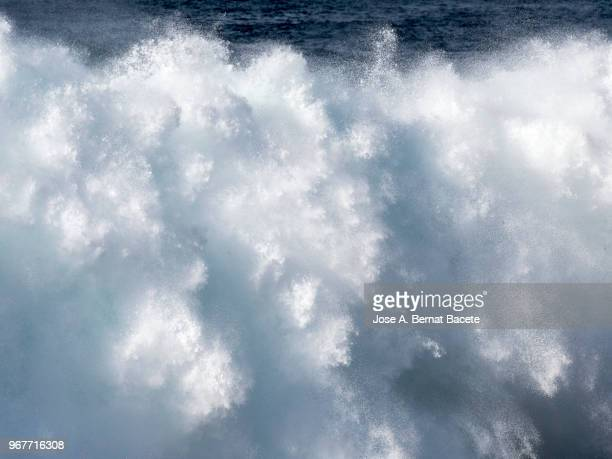 Marine landscape, full frame big wave breaking in Atlantic Ocean at sunset, coast in Terceira Island in the Azores islands, Portugal.