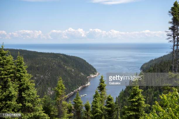marine landscape - river st lawrence stock pictures, royalty-free photos & images