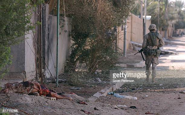 S Marine scouts of the Light Armor Reconnaissance move into downtown Fallujah November 9 2004 in Fallujah Iraq On the authority of Interim Prime...