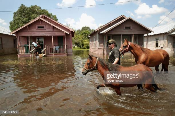 Marine veteran Jeremy Reed with the Wounded Veterans of Oklahoma helps to rescue horses from floodwater after torrential rains pounded Southeast...