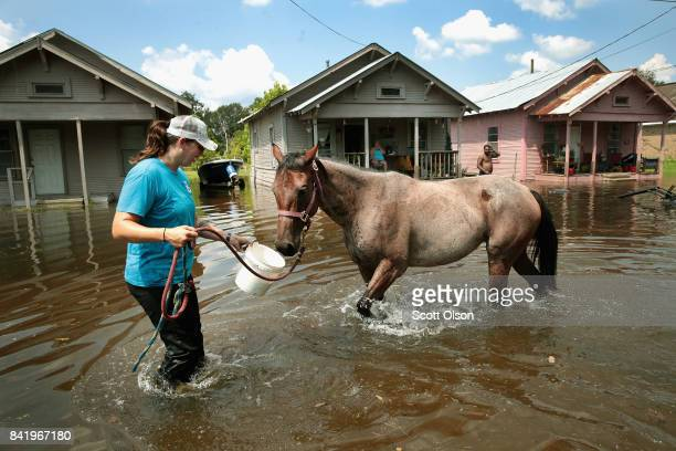 Marine veteran Megan Lowry with the Wounded Veterans of Oklahoma helps to rescue a horse from floodwater after torrential rains pounded Southeast...
